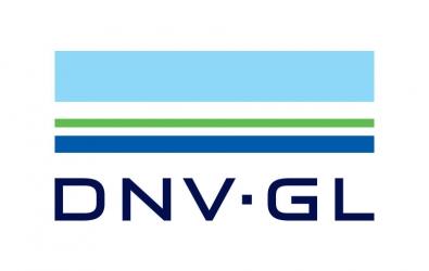 DNV GL healthcare psychiatrics hospitals
