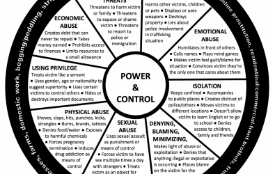 Power and Control Wheel